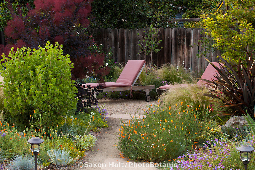 Path leading to lounge chairs on secluded patio in Habets garden, Pleasant Hill