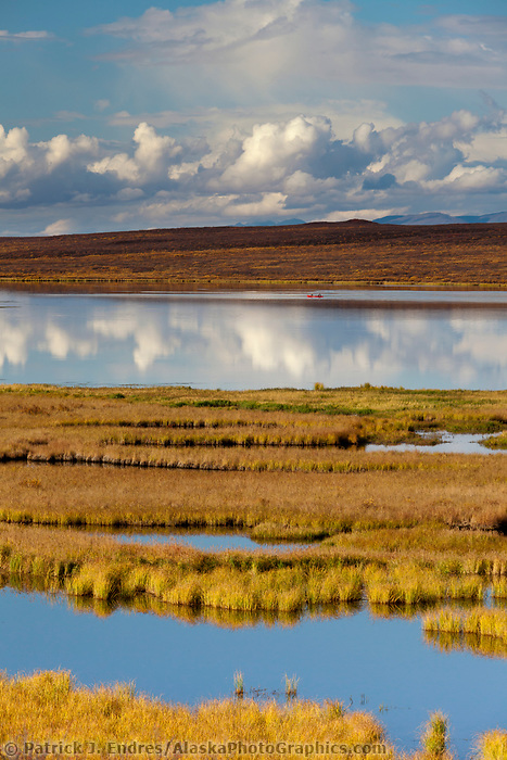 Autumn colors on the taiga and tundra wetlands, Denali highway, Alaska Range mountains, Interior, Alaska.