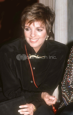 #LizaMinnelli 1985<br /> Photo By John Barrett/PHOTOlink.net / MediaPunch