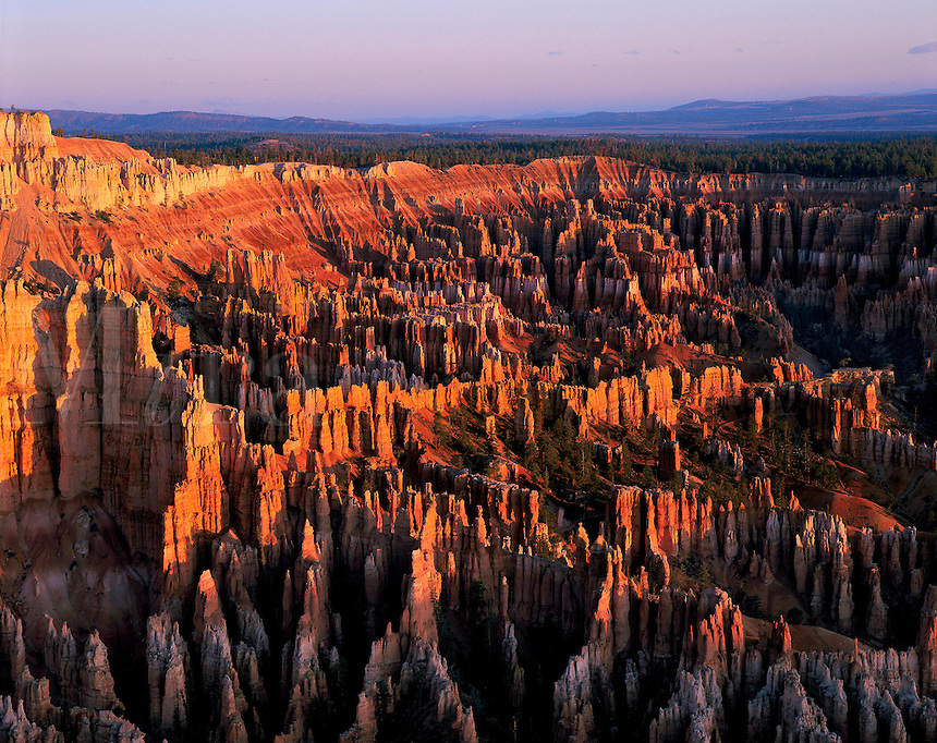 Sunrise of Bryce Point, Bryce National Park, Utah