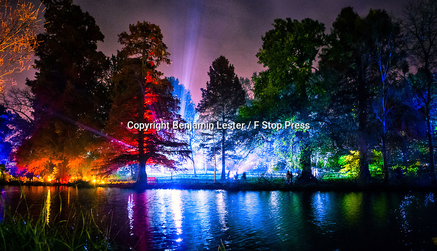 22/11/2014<br /> <br /> Syon Park in South West London opens its doors to the public for the Enchanted Woodland light show. For the ninth year running, the display follows a multi-coloured one-and-a-half mile trail through the (600 year-old) gardens of Syon House.<br /> <br /> All Rights Reserved - F Stop Press. www.fstoppress.com. Tel: +44 (0)1335 300098