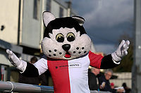 The Woking mascot during Woking vs Bury, Emirates FA Cup Football at The Laithwaite Community Stadium on 5th November 2017