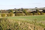 Chalk ridge of Ridgeway ancient route from Broad Hinton, Wiltshire, England, UK