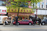 CANADA, Vancouver, British Columbia, the Royal Canadian Mounted Police stop a man in his car in China Town