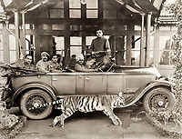 BNPS.co.uk (01202 558833)<br /> Pic: PhilYeomans/BNPS<br /> <br /> Indian staff on a tiger hunt near Ooty.<br /> <br /> Last Days of the Raj - A fascinating family album from one of the last Viceroy's of India reveal Britain's 'Jewel in the Crown' in all its splendour.<br /> <br /> The family album of Viscount George Goschen has been unearthed after 90 years, and provide's an amazing snapshot of the pomp and pageantry of a wealthy and powerful British family in India in the 1920s and 30's.<br /> <br /> They show the Governor of Madras and his family enjoying a lavish lifestyle of parades, banquets and hunting and horse racing in the last decades of the Raj.<br /> <br /> At the time, Gandhi was organising peasants, farmers and labourers to protest against excessive land-tax and discrimination. <br /> <br /> The album consists of some 300 large photographs. They have remained in the family for 90 years but have now emerged for auction following a house clearance and are tipped to sell for &pound;200.
