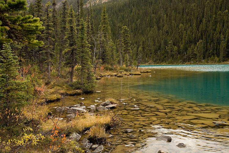 Emerald waters of Cavell Lake, Jasper NP