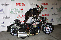 Chopper<br />