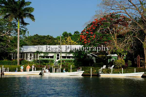 Belize Group