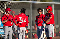 Kiki Menendez (19), D'Shawn Knowles (20), Jeremiah Jackson (8), and Jordyn Adams (21) talk before an Arizona League game against the AZL Giants Black at the San Francisco Giants Baseball Complex on July 1, 2018 in Scottsdale, Arizona. AZL Giants Black defeated the AZL Angels 4-2. (Zachary Lucy/Four Seam Images)