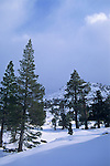 Winter in Desolation Wilderness, near Lake Tahoe, California