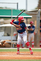 GCL Cardinals Joerlin De Los Santos (8) at bat during a Gulf Coast League game against the GCL Marlins on August 12, 2019 at the Roger Dean Chevrolet Stadium Complex in Jupiter, Florida.  GCL Marlins defeated the GCL Cardinals 9-2.  (Mike Janes/Four Seam Images)