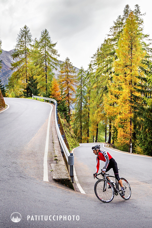 One road biker riding uphill in fall colors on the Umbrail Pass, Switzerland