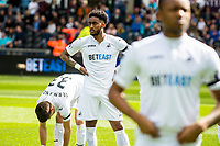Sunday April 02 2017 <br /> Pictured: Leroy Fer of Swansea City looks on <br /> Re: Premier League match between Swansea City and Middlesbrough at The Liberty Stadium, Swansea, Wales, UK. SUnday 02 April 2017