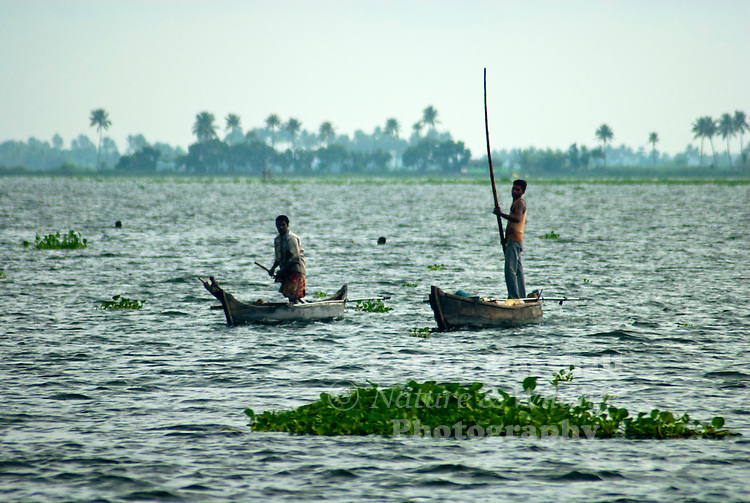 """Fisherman returning back to their village, Alleppey Kerala """"Backwaters"""" - Southern India"""