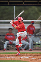 GCL Phillies West Andrick Nava (10) bats during a Gulf Coast League game against the GCL Yankees East on July 26, 2019 at the New York Yankees Minor League Complex in Tampa, Florida.  (Mike Janes/Four Seam Images)