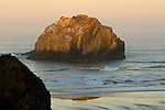 Face Rock at sunset at Bandon Beach on the Oregon coast