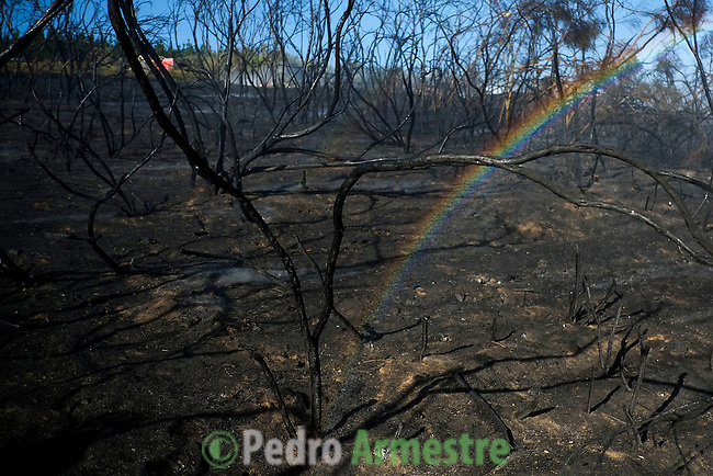 A rainbow appears in a burnt area after a wildfire in Fumaces, near Ourense on August 25, 2013. (c) Pedro ARMESTRE