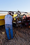 A farmer supervises maintenance on his Case 8120 combine.