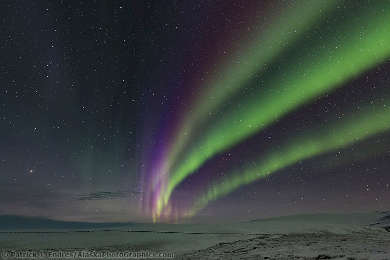 The northern lights over the snowy tundra and Trans Alaska Oil Pipeline in Alaska's Arctic.