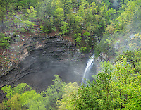 Petit Jean State Park, Arkansas: Cedar Creek falls surrounded by the spring hardwood forest