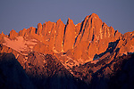 Alpenglow on Mount Whitney at sunrise, near Lone Pine, Eastern Sierra, California