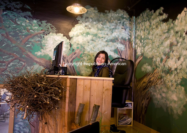 SEYMOUR, CT-09 FEBRUARY 2009-020509BF02-- Prathana Sharma, a search engine optimization specialist in the internet department of Basement Systems, Inc. works in her area called the Eagle's nest in the newly created area that has been dubbed the Treehouse at the company's Seymour headquarters. The company specializes in what they call dry basement science.  <br />  Bob Falcetti Republican-American