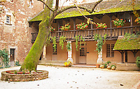 A court yard of an old house in the town centre with a tree. The house is now the wine museum in Bergerac. Bergerac Dordogne France