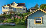 Tofino, British Columbia: Tofino harbor houses on Vancouver Island, Canada