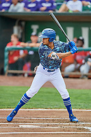 Daniel Robinson (50) of the Ogden Raptors bats against the Billings Mustangs at Lindquist Field on August 17, 2018 in Ogden, Utah. Billings defeated Ogden 6-3. (Stephen Smith/Four Seam Images)