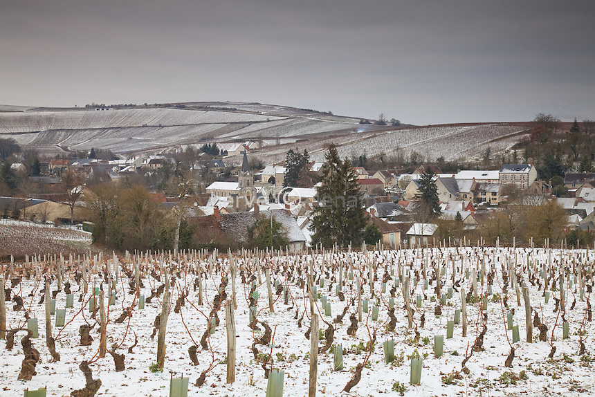 France, Cher, région du sancerrois, Buée, le village et son vignoble en hiver sous la neige, Sancerre AOC // France, Cher, Sancerre region, Bue, the village and its vineyards in winter under the snow
