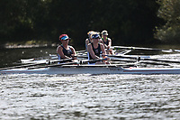 Race: 80  W.IM1.2x   [46]Evesham RC - EVE-Russell  vs [48]Evesham RC - EVE-Staite<br /> <br /> Ross Regatta 2017 - Monday<br /> <br /> To purchase this photo, or to see pricing information for Prints and Downloads, click the blue 'Add to Cart' button at the top-right of the page.