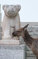 An elk licks moisture off a bear statue at Mammoth Village.