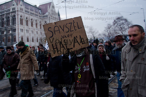 Protesters demonstrate against the international ACTA (Anti-Counterfeiting Trade Agreement) treaty in Budapest, Hungary on February 11, 2012. ATTILA VOLGYI