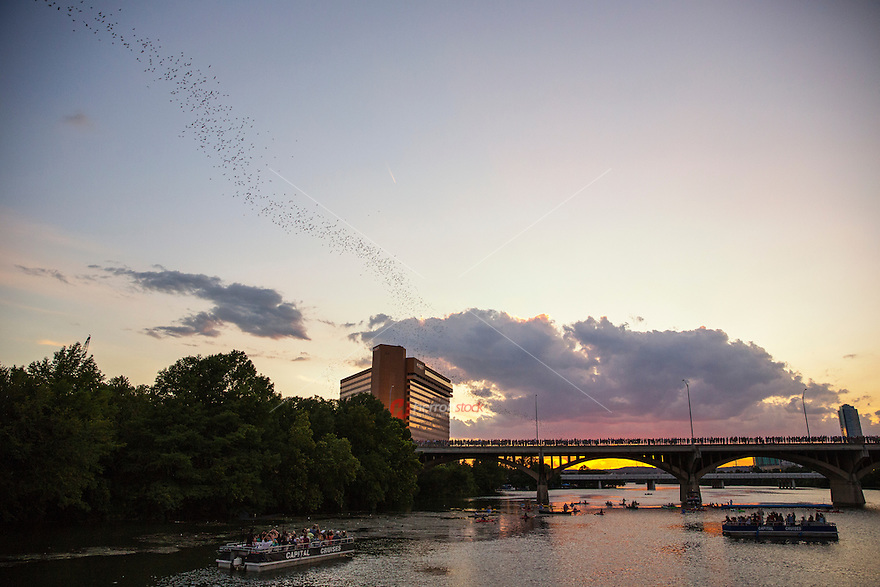 Bats flights are during hot and dry summer nights, when multiple columns of bats emerge from the Congress Avenue Bridge.