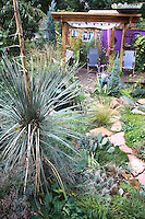 A yucca seems to guard the path to Dan Johnson's purple walled deck in his back yard garden in Denver