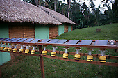 Tataquara, Amazon, Brazil. Ecotourism - living quarter; solar power torches.