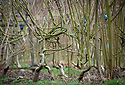 23/02/18<br />