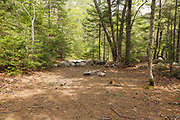 Location of a spur line along the abandoned East Branch & Lincoln Railroad (1893-1948) in the Thoreau Falls Valley of the Pemigewasset Wilderness in Lincoln, New Hampshire. This spur line came off of the North Fork Branch of the railroad, near Jumping Brook. And it crossed the North Fork of the East Branch Pemigewasset River and traveled a short distance on the East side of the river ending at a landing / work area.