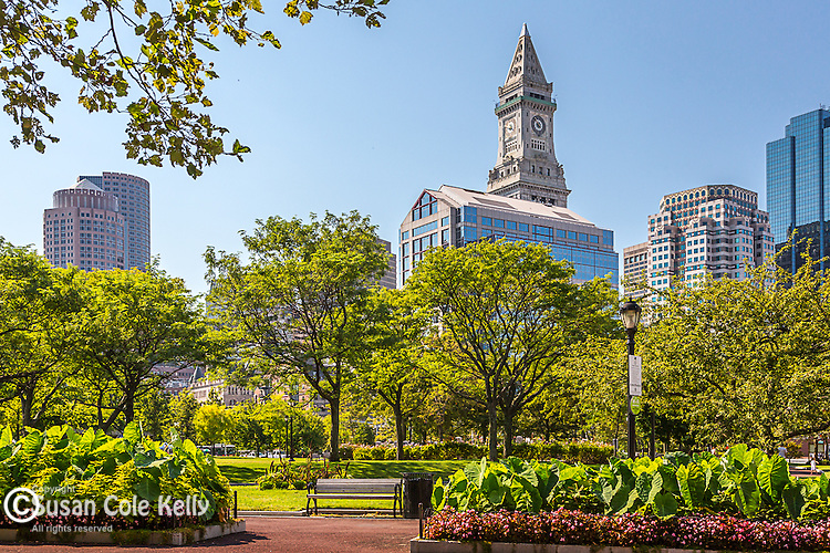 The Rose Kennedy rose garden in Boston, Massachusetts, USA