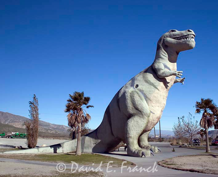 The World's Biggest Dinosaurs are located in Cabazon,  California west of Palm Springs.