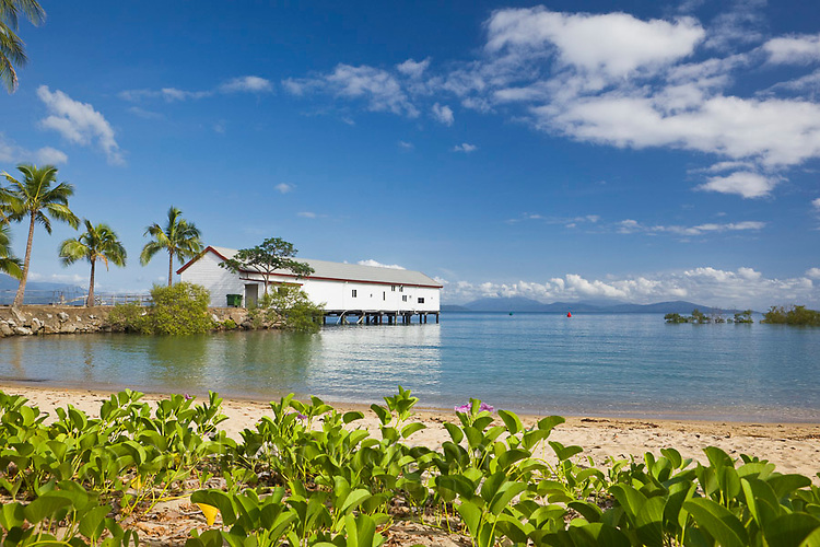 Historic Sugar Wharf on the Port Douglas waterfront.  Port Douglas, Queensland, Australia