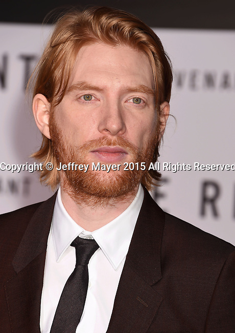 HOLLYWOOD, CA - DECEMBER 16: Actor Domhnall Gleeson arrives at the Premiere of 20th Century Fox And Regency Enterprises' 'The Revenant' at TCL Chinese Theatre on December 16, 2015 in Hollywood, California.