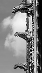 VMI Vincentian Heritage Tour: Gargoyles hang from the exterior of the Cathedral of Notre Dame at Amiens (Cathedral Basilica of Our Lady of Amiens) on Wednesday, June 22, 2016, as the VMI cohort visited the city of Amines, France. (DePaul University/Jamie Moncrief)