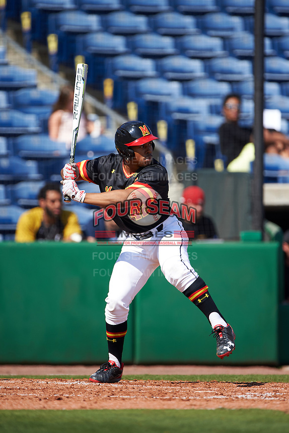 Maryland Terrapins right fielder Marty Costes (42) at bat during a game against the Alabama State Hornets on February 19, 2017 at Spectrum Field in Clearwater, Florida.  Maryland defeated Alabama State 9-7.  (Mike Janes/Four Seam Images)