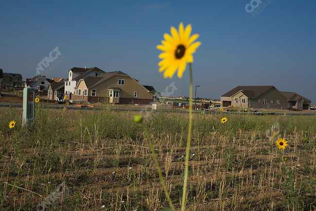 A housing development located at 63rd Avenue and Fundy Street, east of Denver, Colorado. Colorado, July 29, 2007.