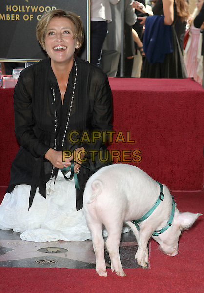 EMMA THOMPSON .Emma Thompson Receives Star On The Hollywood Walk Of Fame,  Hollywood, CA, USA, 6th  August 2010..full length half kneeling pig black shirt sheer white skirt lead leash funny smiling .CAP/ADM/FS.©Faye Sadou/AdMedia/Capital Pictures.