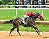 Old Upstart winning at Delaware Park on 6/8/17