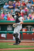 Wisconsin Timber Rattlers catcher Nathan Rodriguez (9) signals to the defense during a game against the Fort Wayne TinCaps on May 10, 2017 at Parkview Field in Fort Wayne, Indiana.  Fort Wayne defeated Wisconsin 3-2.  (Mike Janes/Four Seam Images)