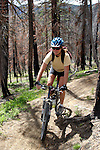 A felmaile mountain biker descends the Entiat Valley's Tommy Creek Trail in North  Central Washington.