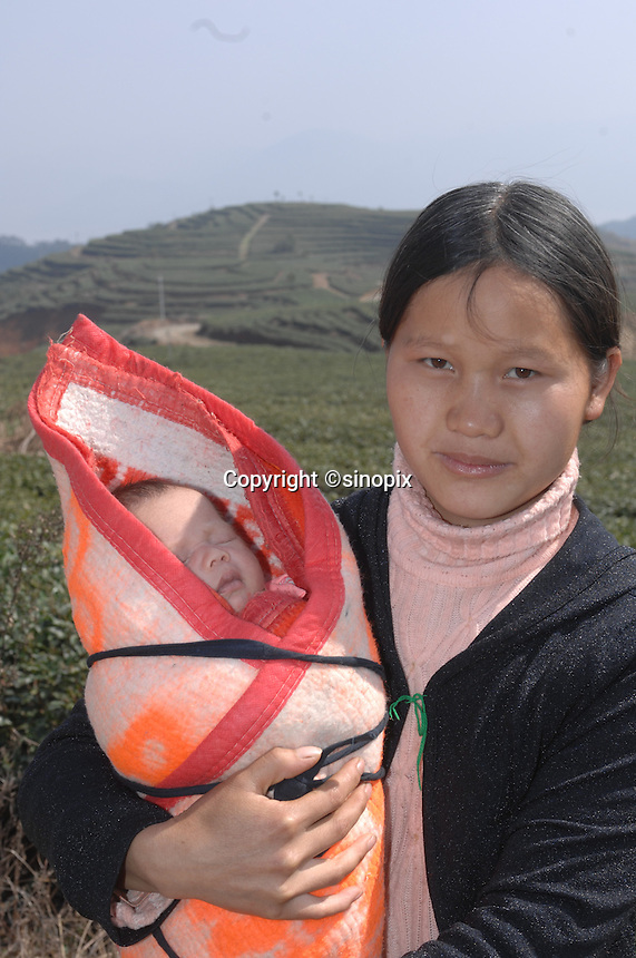 "Xiong Guang Mei, 24, with her 20 days old baby boy, Jia Heng, who was born at the plantation, and spends his days strapped to her back when she is working at The Tian Hu (Sky Lake) Tea Farm in the mountains outside Fuding City, Fujian Province where ""Silver Tip"" tea is produced.  Workers here are paid around 53 pounds a month during harvest season, they work ten hour days, seven days a week and the women work with the children strapped to their backs. The tea sells for upto 20 pounds a pot in the UK."